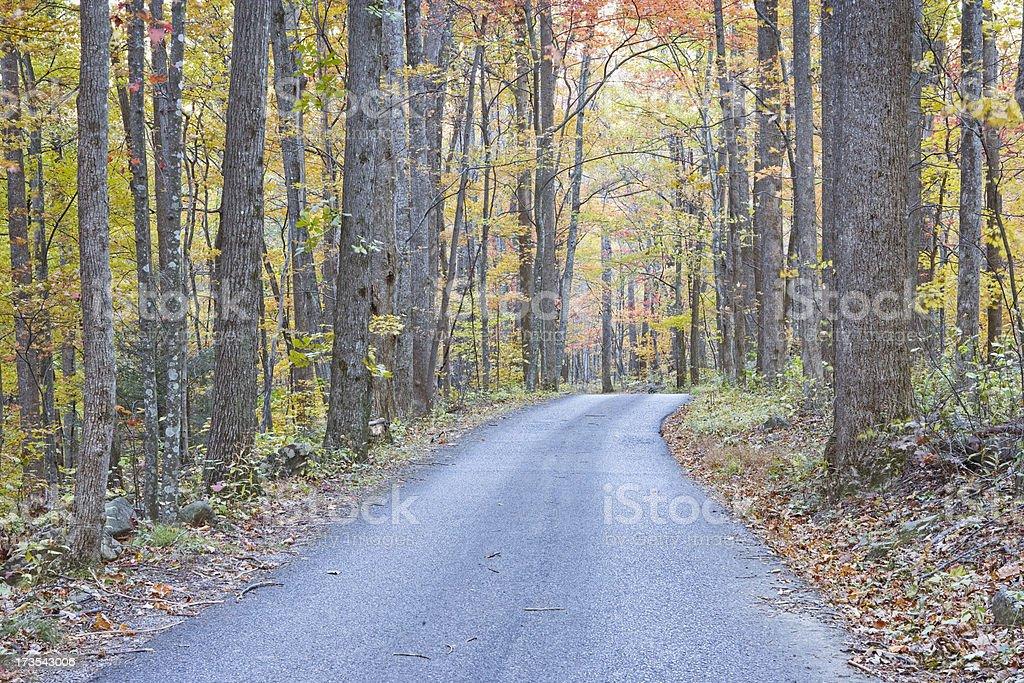 Smoky Mountain Autumn Roads Series (XXL) royalty-free stock photo