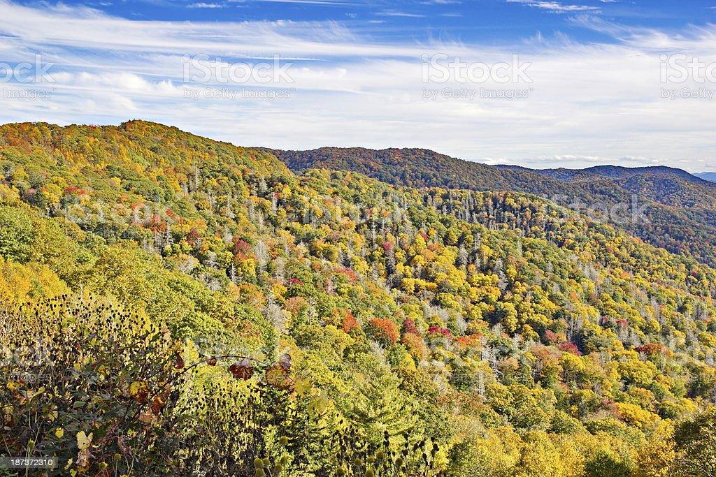 Smoky Mountain Autumn Views stock photo