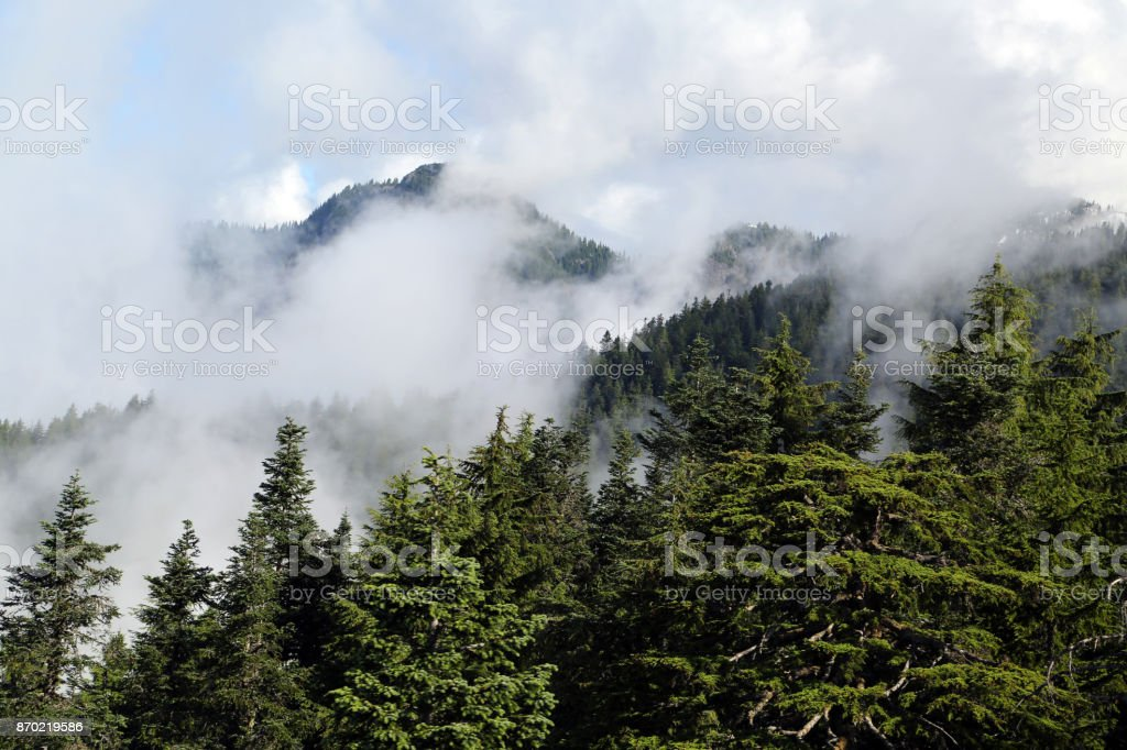 Smoky Mountain stock photo