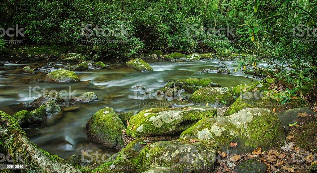Smoky Mountain River stock photo