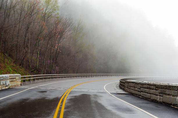 Smoky Mountain Road verschwindet im Nebel mit Kopierraum – Foto