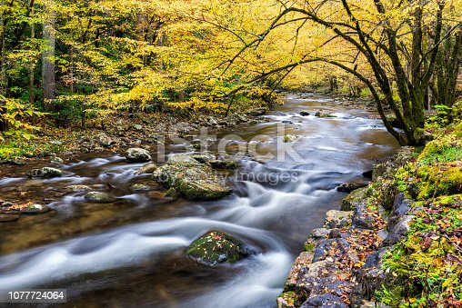 Horizontal shot of a Smoky Mountain Stream in Autumn Colors.