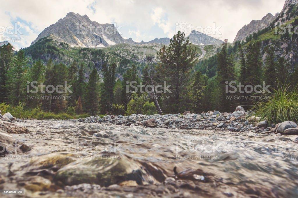 Smoky Mountain Stream royalty-free stock photo