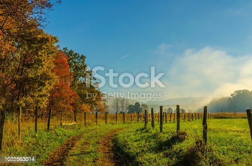 An early Autumn morning in Cades Cove, Great Smoky Mountains National Park.   Post and Wire fences line a dirt path leading line toward a bright blue sky, fog and mountains