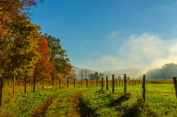 smoky mountains autumn fog and sun - rural scene stock pictures, royalty-free photos & images