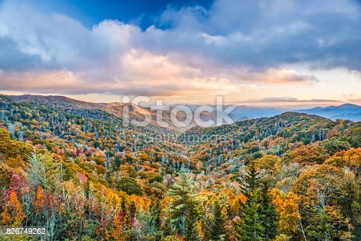 istock Smoky Mountains National Park 826749262