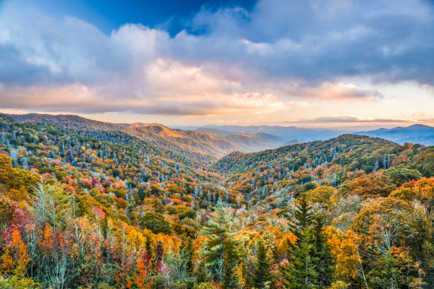 Smoky Mountains National Park Smoky Mountains National Park, Tennessee, USA autumn landscape at Newfound Gap. appalachia stock pictures, royalty-free photos & images