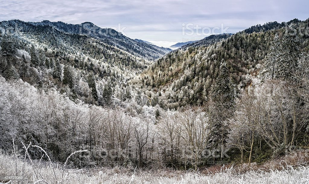 Smoky Mountains Winter Panoramic royalty-free stock photo