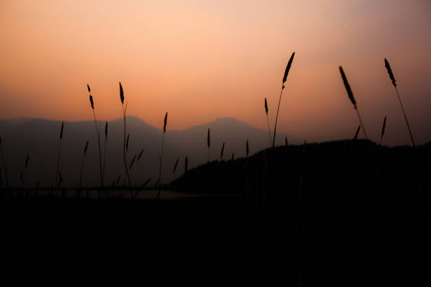 Smoky View of Mountains stock photo
