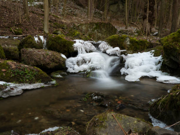 smooth motion of wild water in a river in winter with snow and ice on rocks and stones in the beautiful nature of a forest stock photo