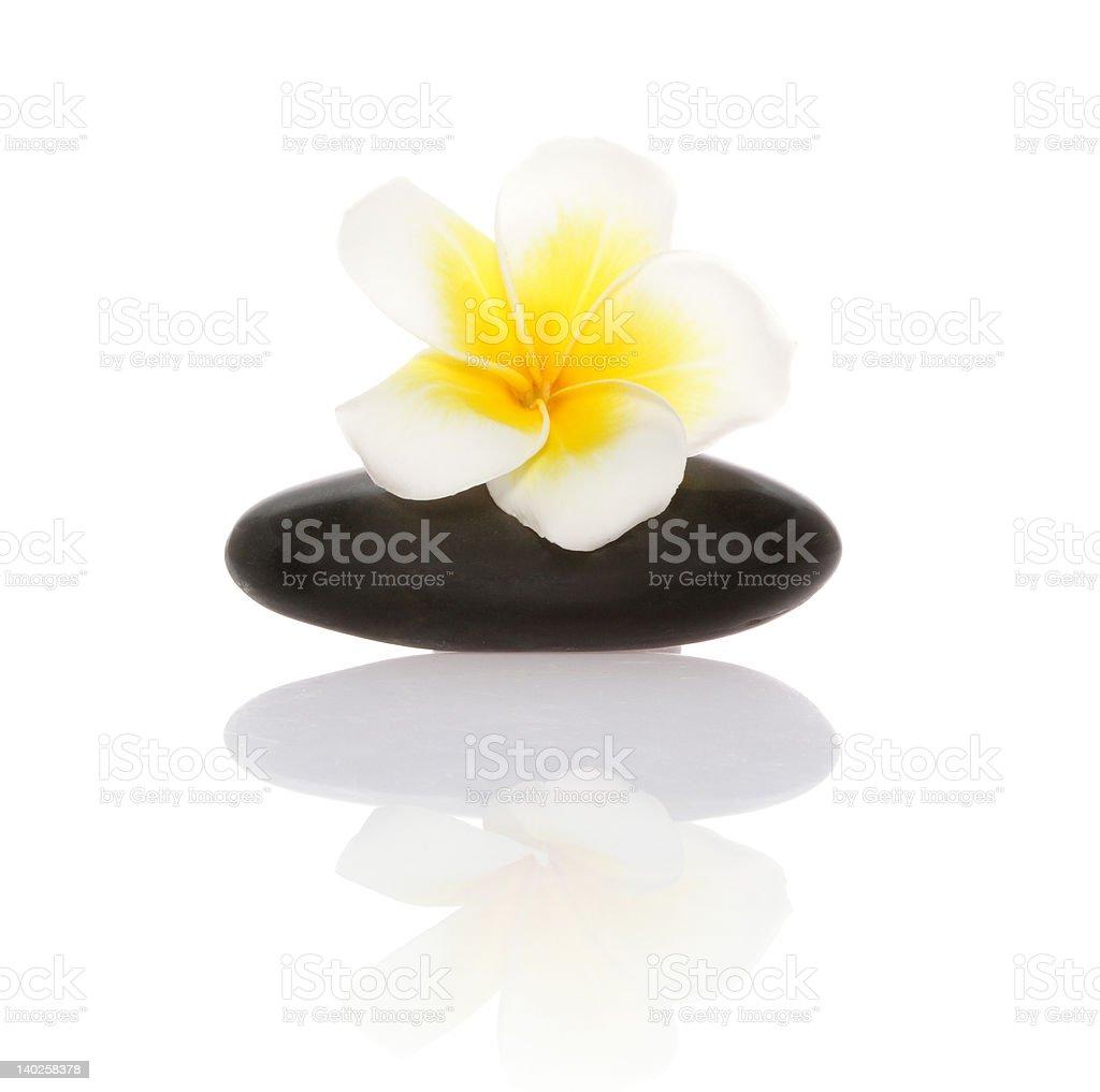 smooth pebble and frangipani flower royalty-free stock photo