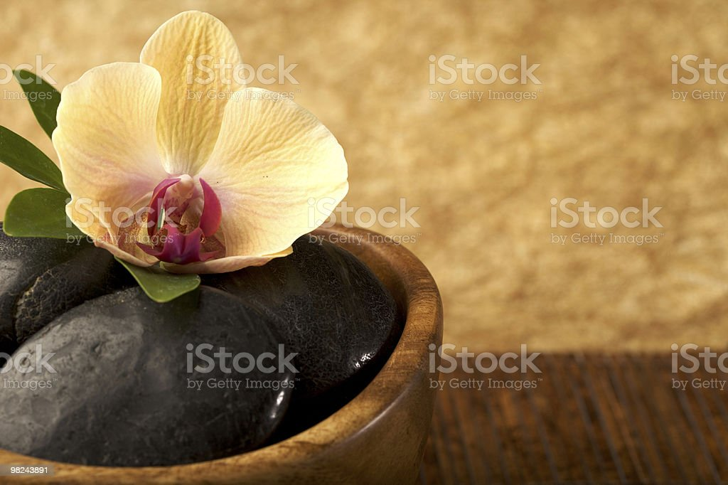 Smooth rocks with flower on top and a serene background royalty-free stock photo
