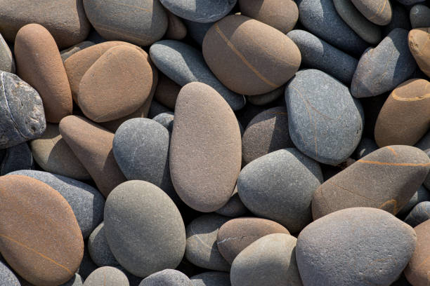 smooth, rounded pebbles washed up on a storm ridge - resilience concept stock photos and pictures