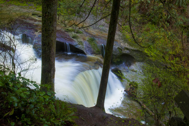 Smooth Waterfall in Forest stock photo