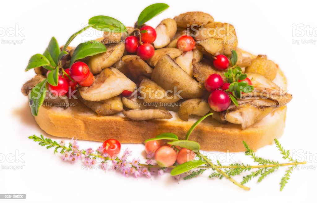 Smoothed macro photo view of vegetarian sandwich on white background stock photo