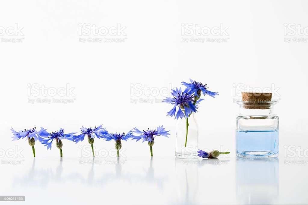 Smoothing toner water and cornflowers stock photo