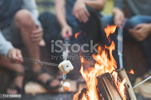 Close-up shot of a campfire with four metal skewers roasting marshmallows on a summer evening.