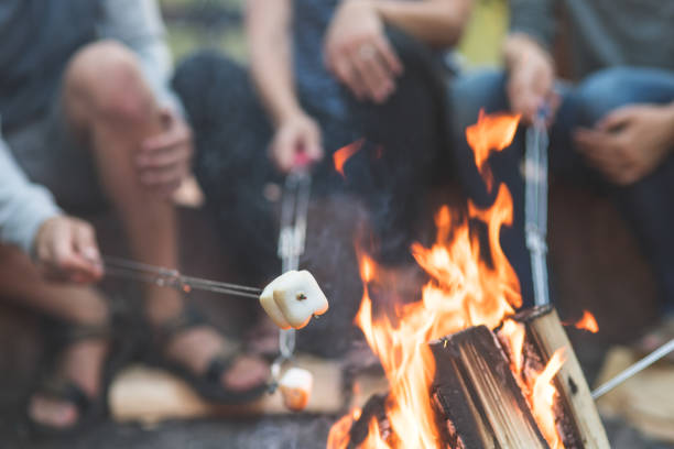 Smores by the campfire stock photo