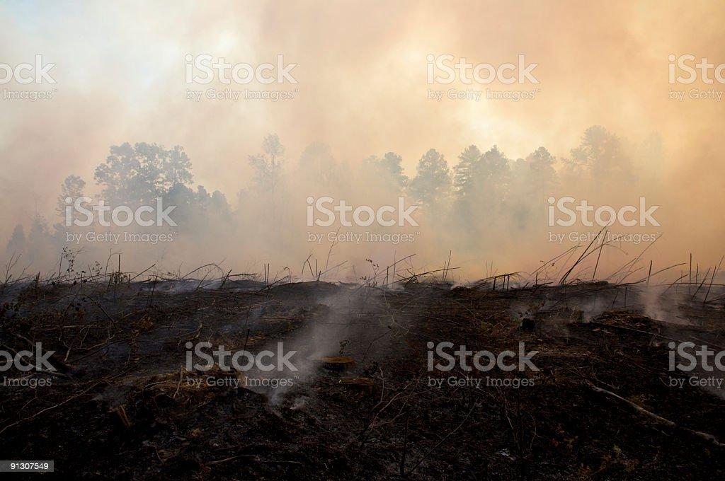 Se carbonice completamente paisaje de un fuego indicado para quemaduras - foto de stock