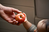 Close-up of an unrecognisable baby boy being passed an apple by his unrecognisable father.