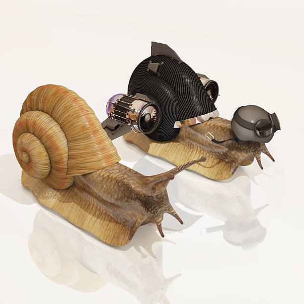 snail and upgraded snail, 3d rendering stock photo