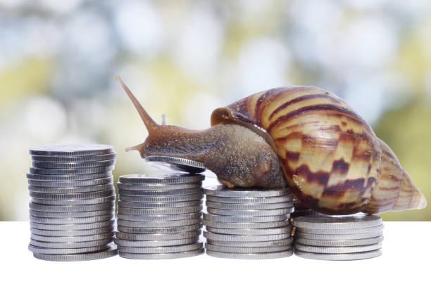 snail climbing the pile of coins - powolny zdjęcia i obrazy z banku zdjęć