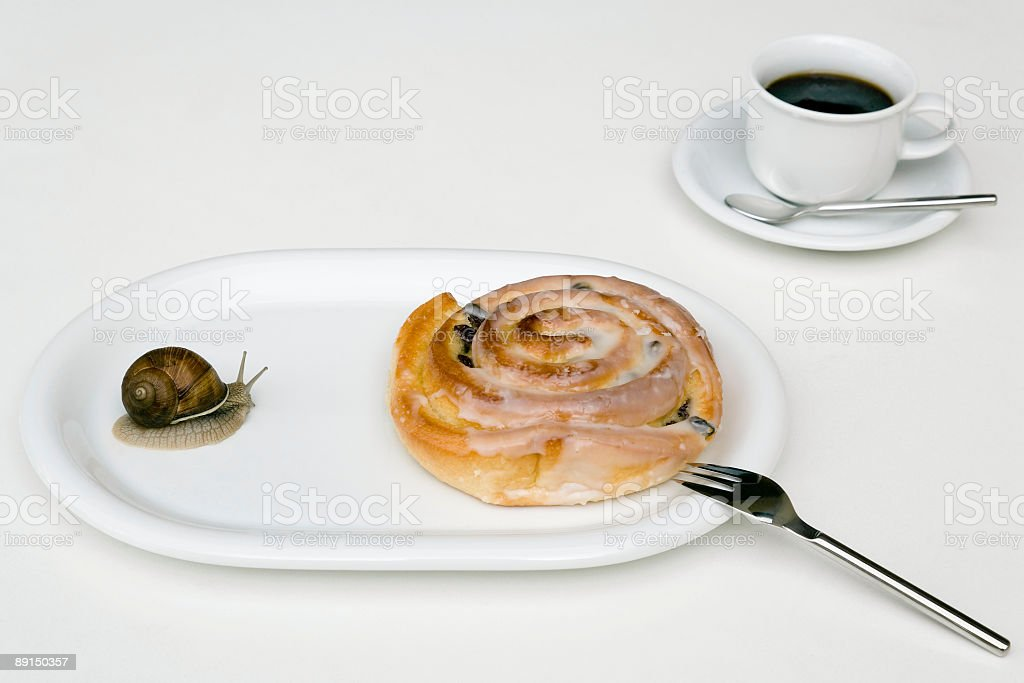 Snail Crawling on White Plate with Cake and Coffee Cup royalty-free stock photo