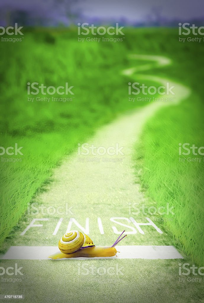 Snail going over the finish line, Concept royalty-free stock photo