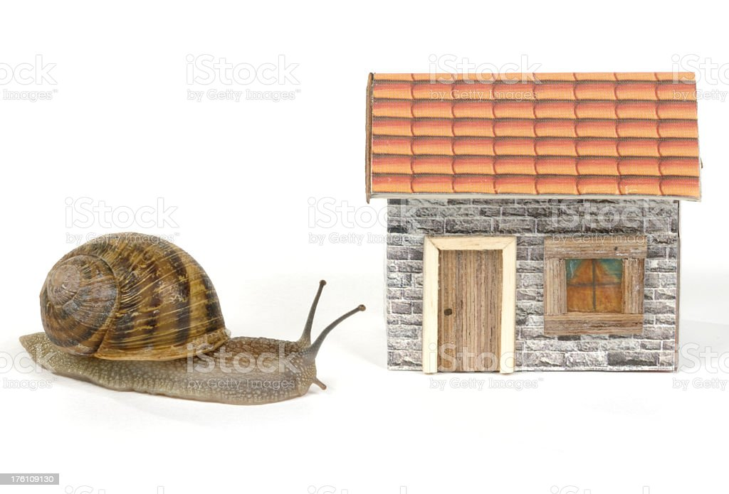 Snail in Dollhouse royalty-free stock photo