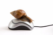 istock Snail on mouse 172987160