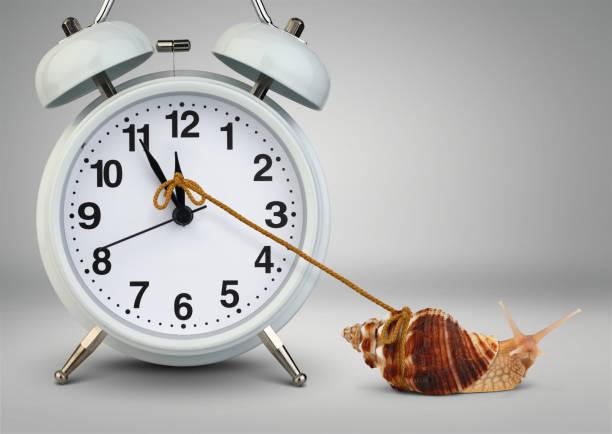 snail pulling clock, time management concept - powolny zdjęcia i obrazy z banku zdjęć