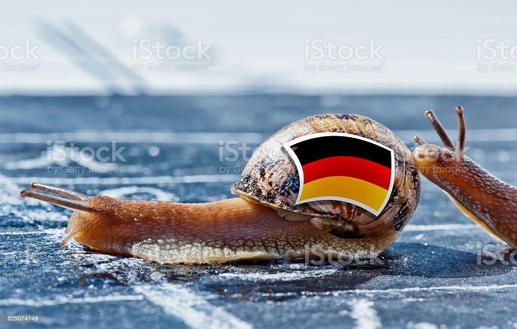 Weinbergschnecke mit Deutschland Flagge ermutigt durch ein anderes Land – Foto