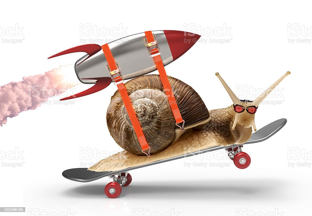 snail with speed stock photo