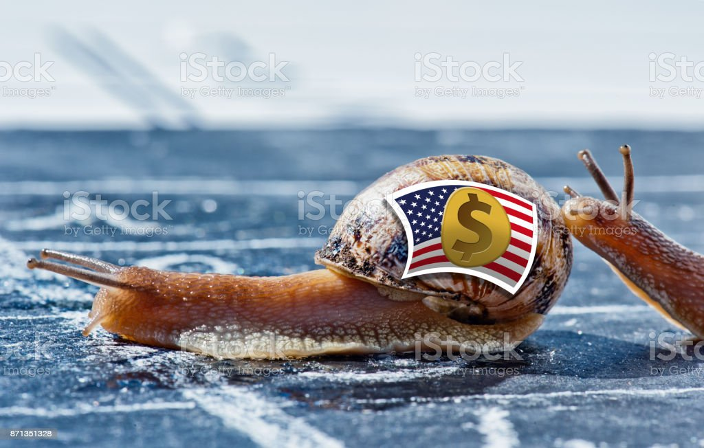 snail with the colors of US dollar currency flag encouraged by another stock photo