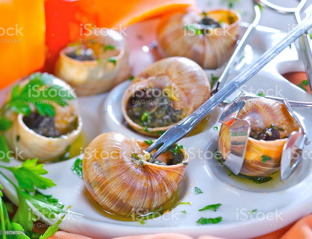 Snails with garlic royalty-free stock photo