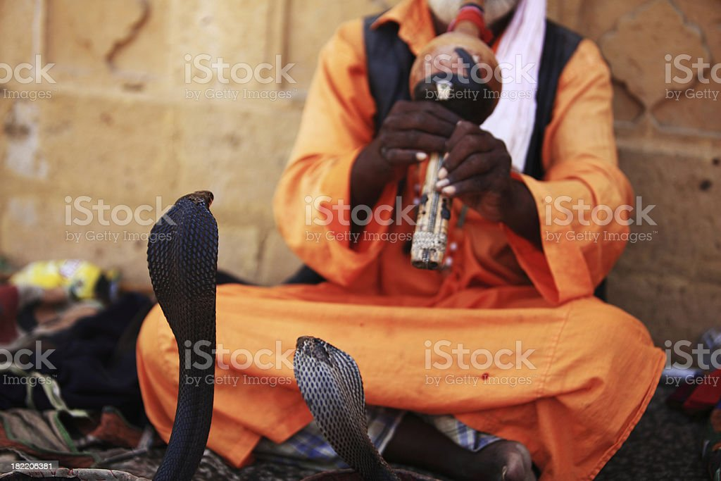 Snake and Charmer royalty-free stock photo