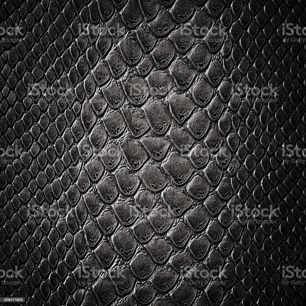 Snake black skin leather texture stock photo