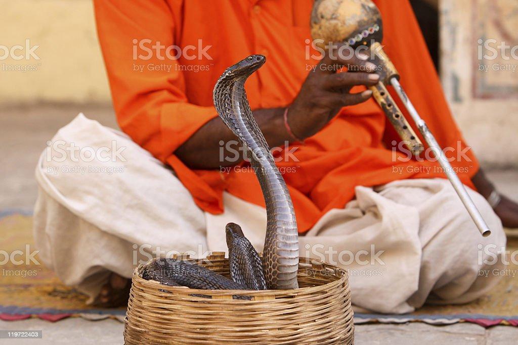 Snake charmer in Jaipur, India stock photo