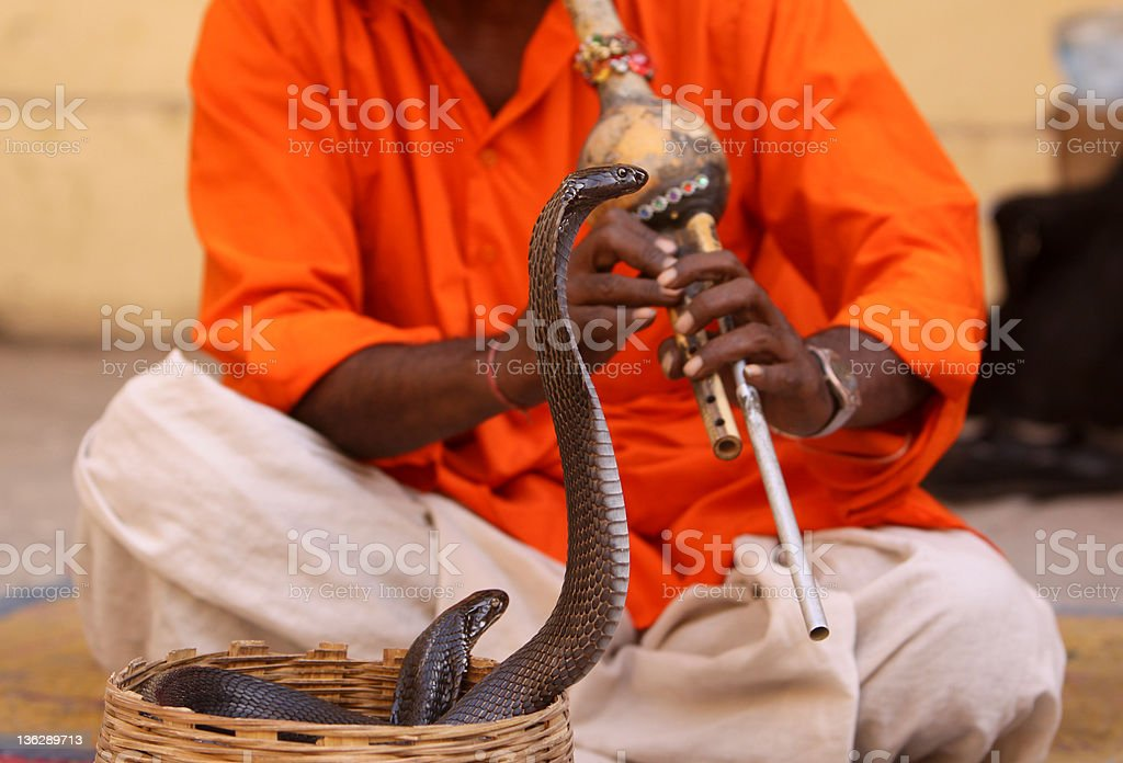 Snake charmer in Jaipur, India royalty-free stock photo
