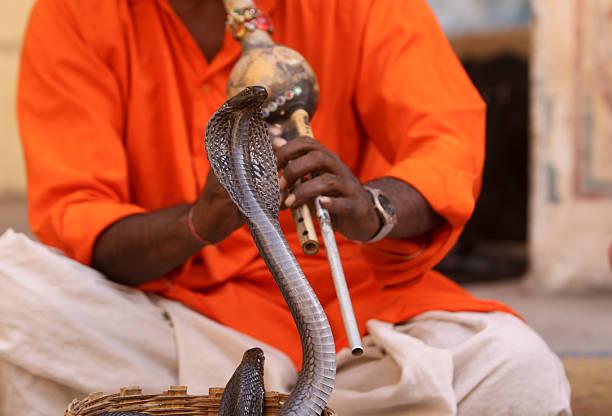 Incantatore di serpenti come fanno