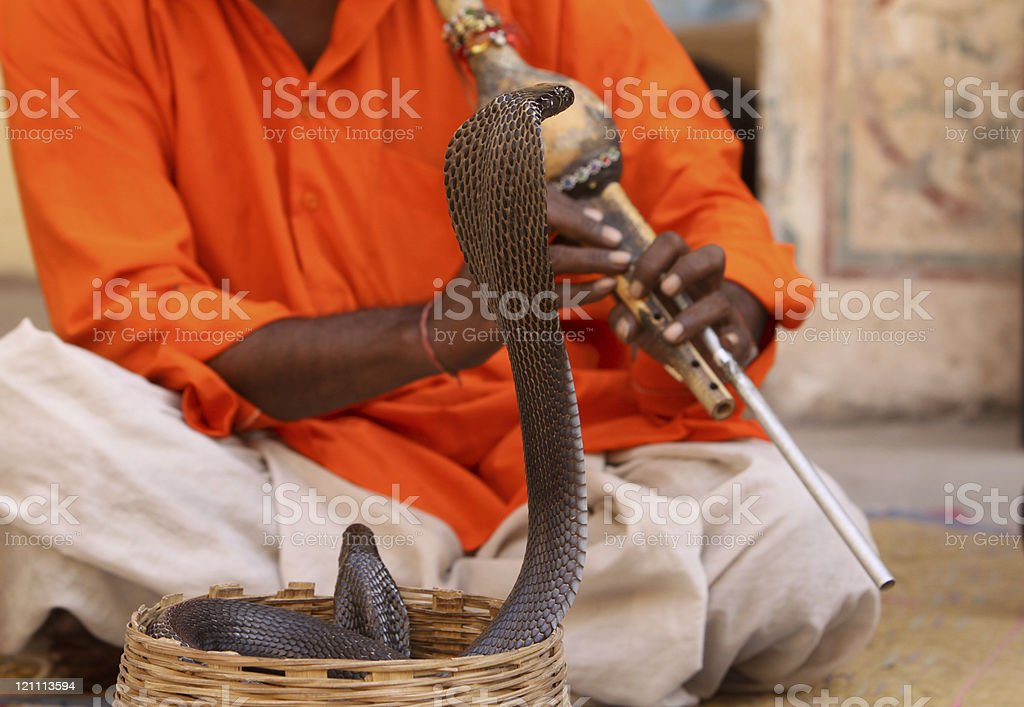 Snake charmer in Rajasthan, India royalty-free stock photo