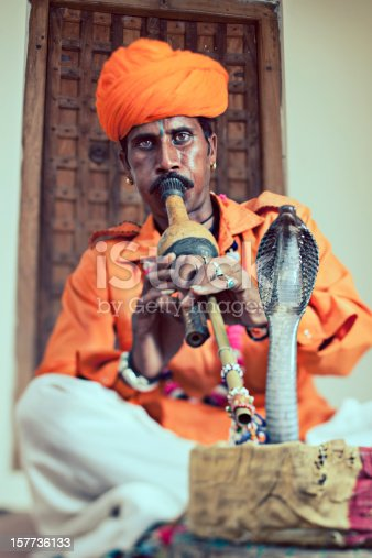 Snake Charmer playing music with his cobra dancing. - Tilt & Shift used .