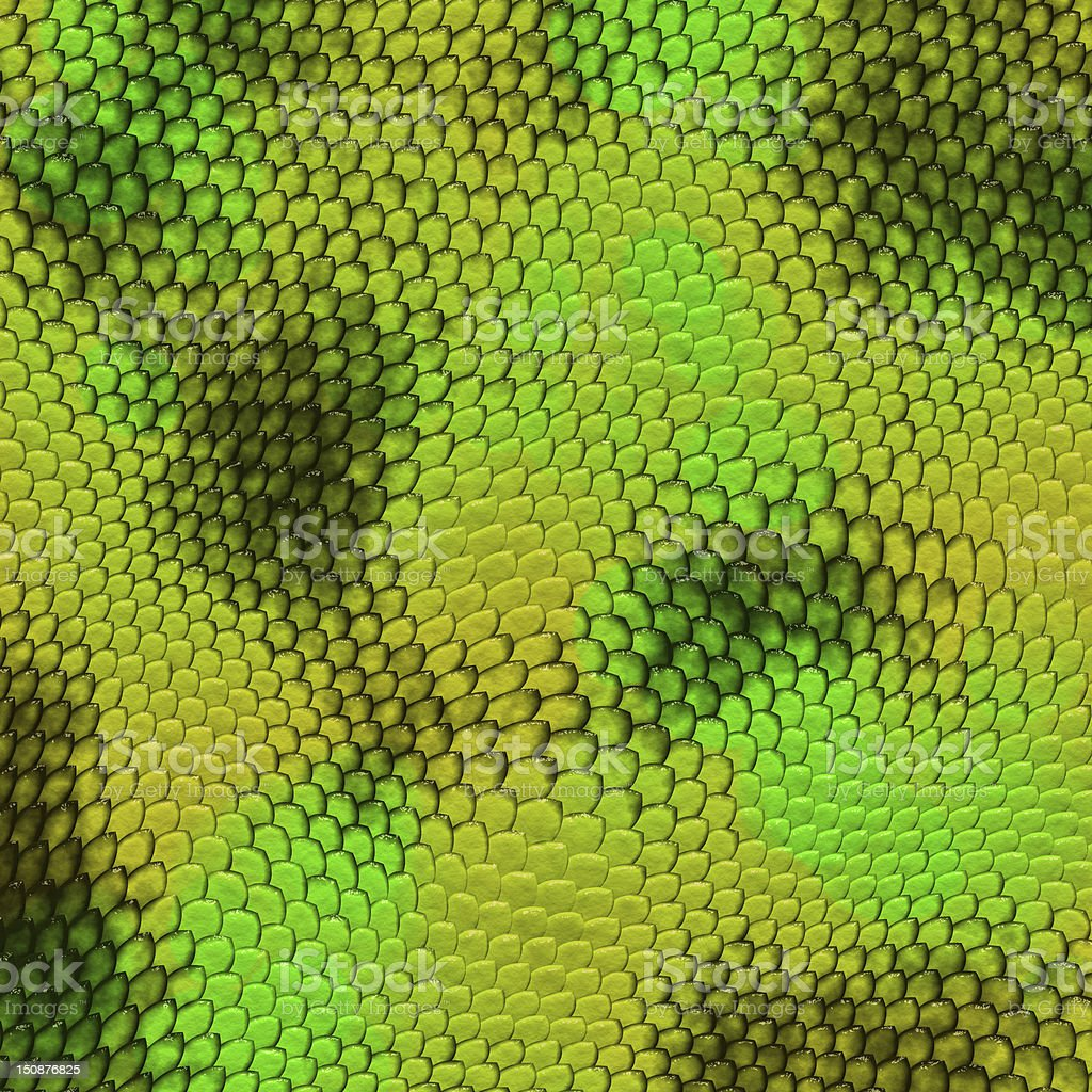 Snake green and yellow texture stock photo