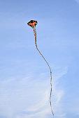 Snake designed kite flying in the sky on kite festival in Udaipur rajasthan