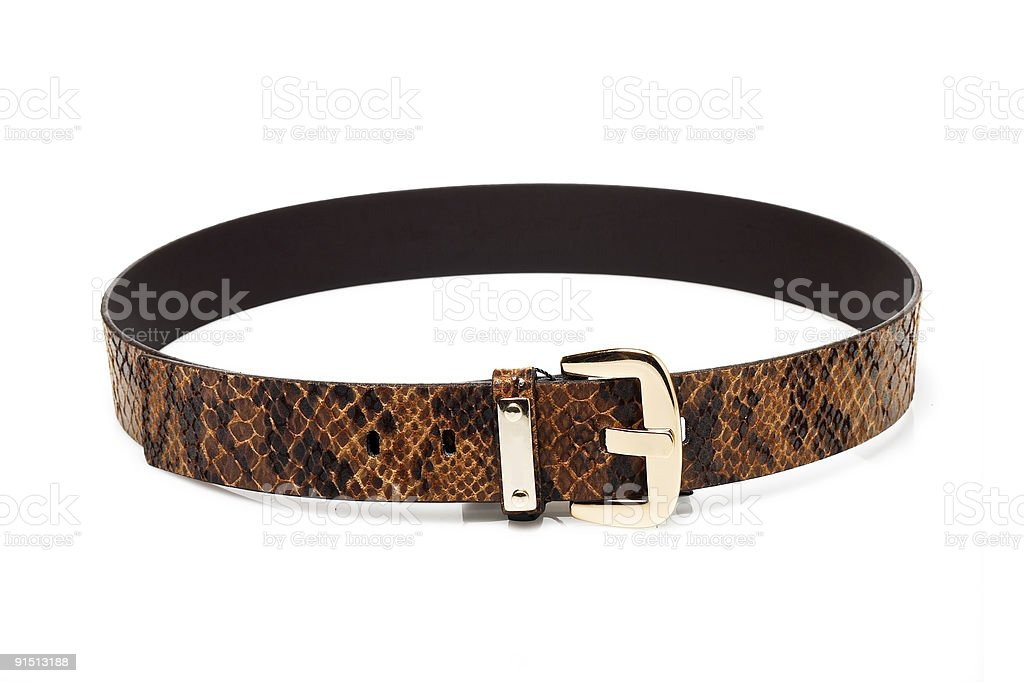 Snake leather belt stock photo
