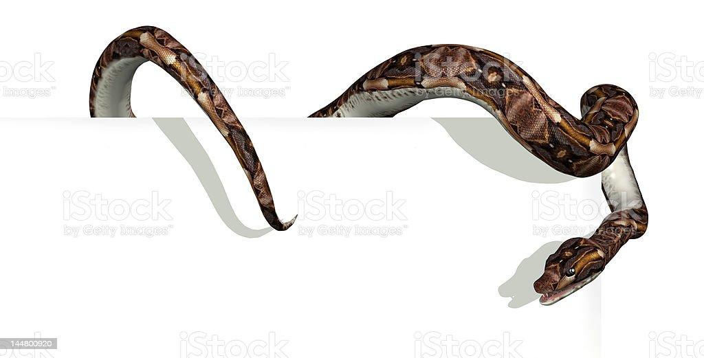 Snake on Sign Edge royalty-free stock photo