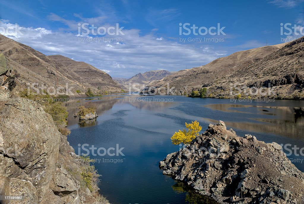 Snake river in Hells Canyon with yellow autumn tree stock photo