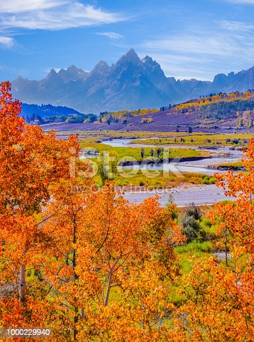 istock Snake River with aspens  in Autumn at Grand Teton National Park 1000229940