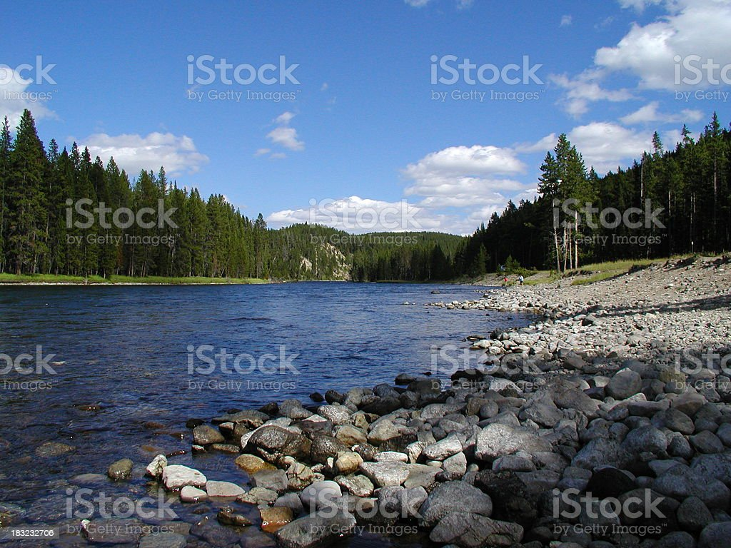 Snake river with the forest on a clear day royalty-free stock photo