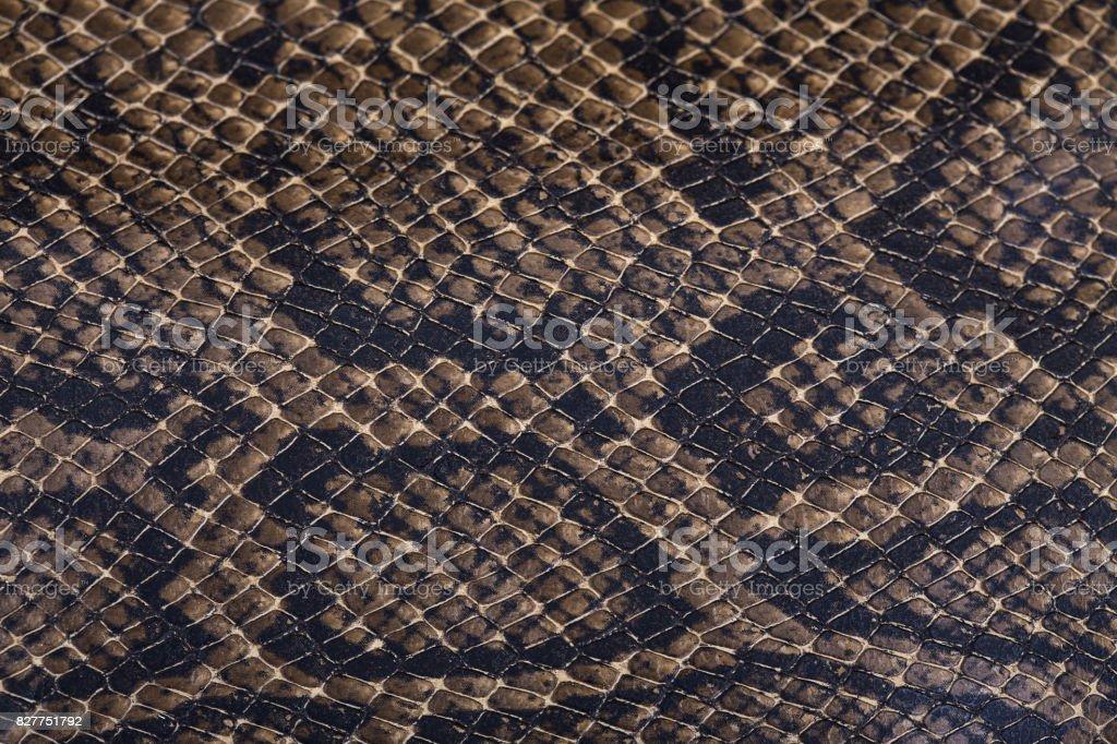 Fondo de la piel de serpiente - foto de stock